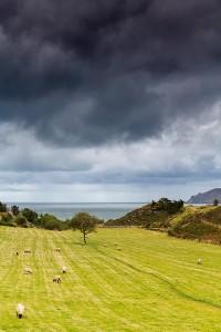 Irish-Landscape---copia